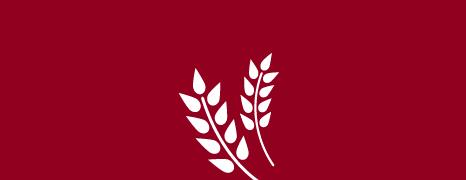 Forestale: Nessuna contaminazione da OGM a Vivaro