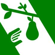 OGM: è disastro ambientale?