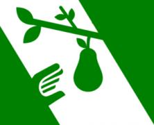 Proteine vegetali ed economia circolare: intervista a Davide Ederle